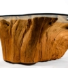 Modern Cypress Tree Trunk Coffee Table 1970s Sandblasted Organic Freeform Design